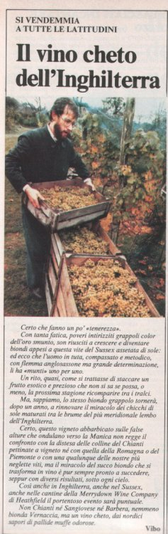 2020-10-18 vino cheto england.jpg