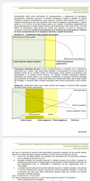 Screenshot_2021-01-18-18-56-56-216_com.google.android.apps.docs.jpg